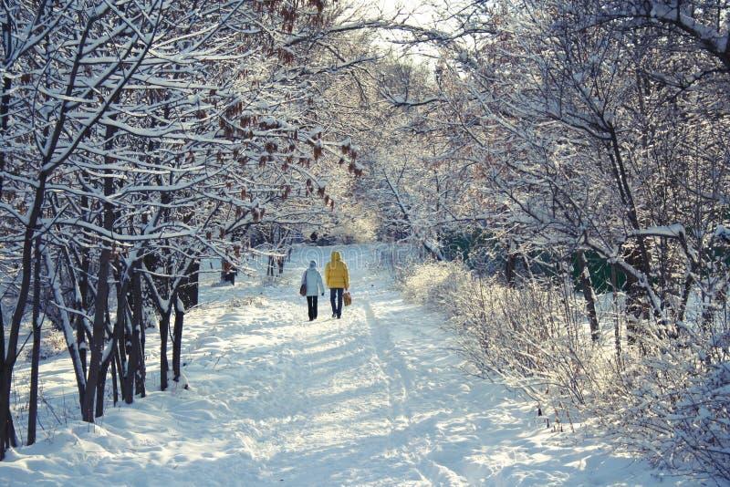 Caminata del invierno foto de archivo