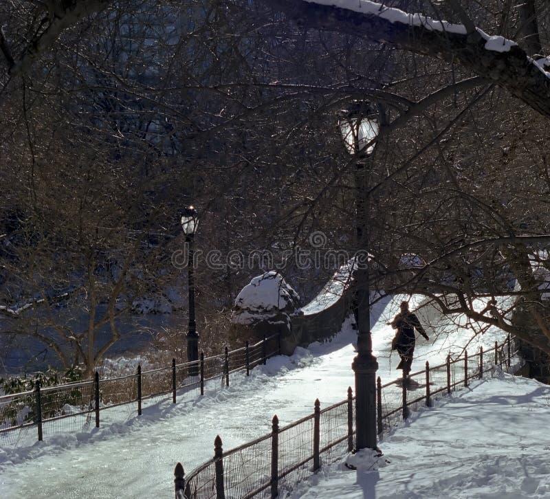 Caminata del invierno de Central Park fotografía de archivo