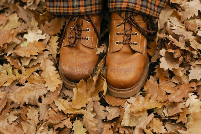 Caminata del otoño imagen de archivo