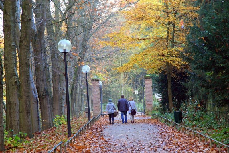 Caminata del otoño en el parque imágenes de archivo libres de regalías