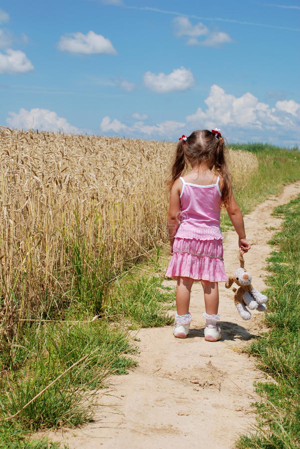 Caminata en el campo de trigo imagen de archivo
