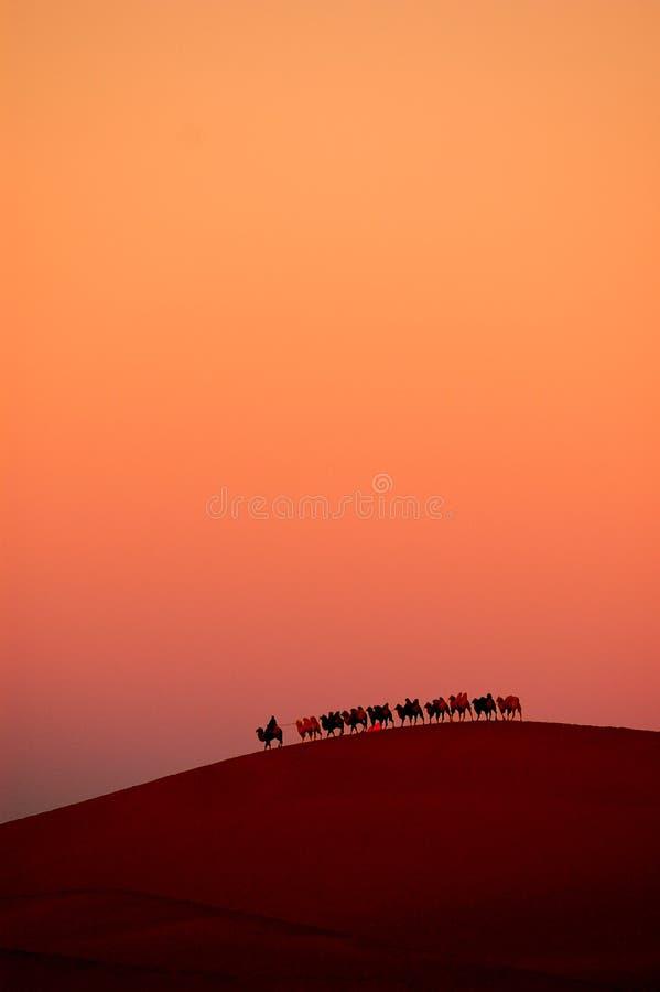 Caminata en el desierto imagen de archivo