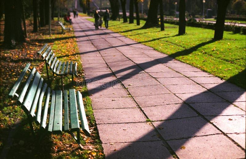 Caminata en parque foto de archivo libre de regalías
