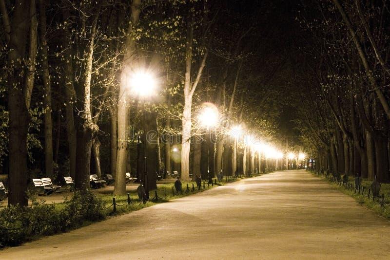 Caminata en parque en la noche imagenes de archivo