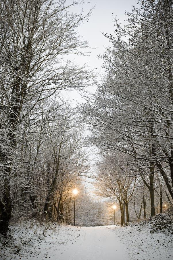 Caminata Nevado imagenes de archivo