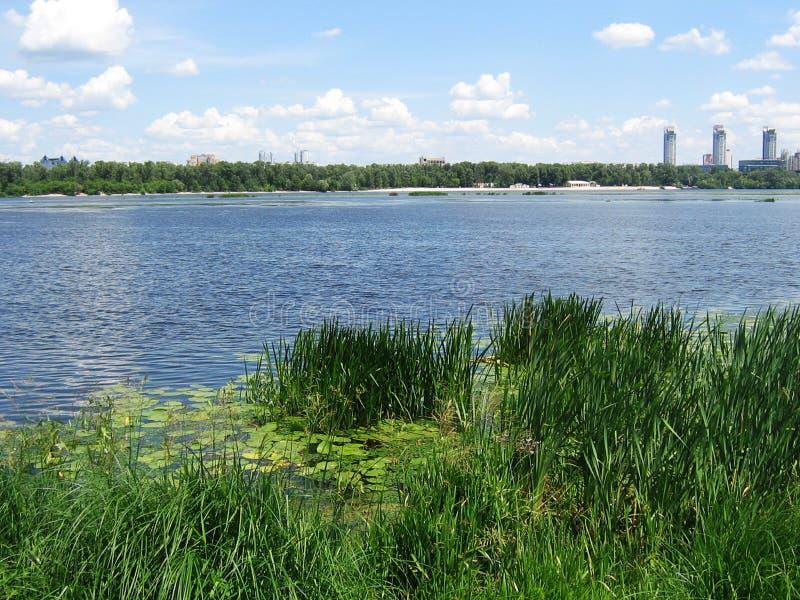 camine a lo largo de los bancos del río de Dnieper en un día de verano caliente fotos de archivo