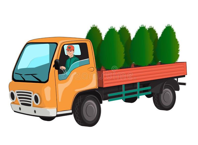 Caminhão com thuja ilustração stock