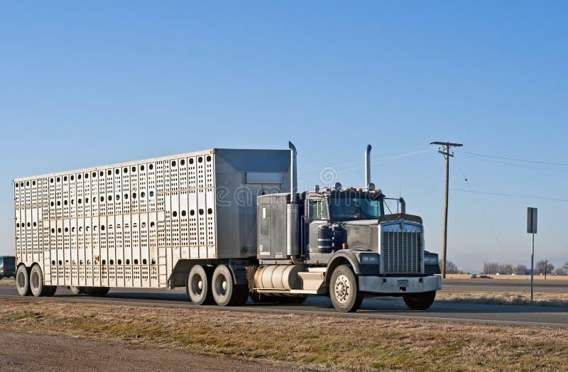 Caminhão conservado em estoque de uma exploração agrícola local imagens de stock