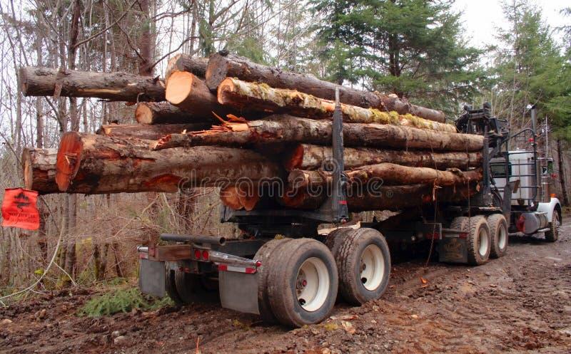 Caminhão de registo carregado fotografia de stock