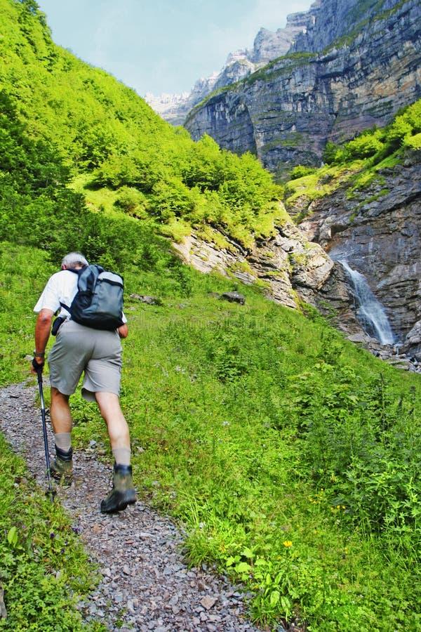 Caminhada alpina suíça foto de stock