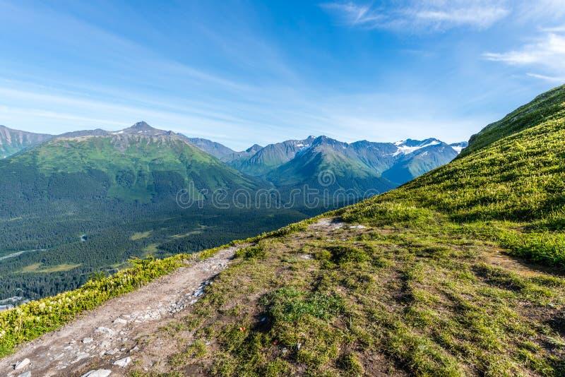 Caminhada ao longo das montanhas do ` s Chugach de Alaska na península de Kenai imagem de stock royalty free