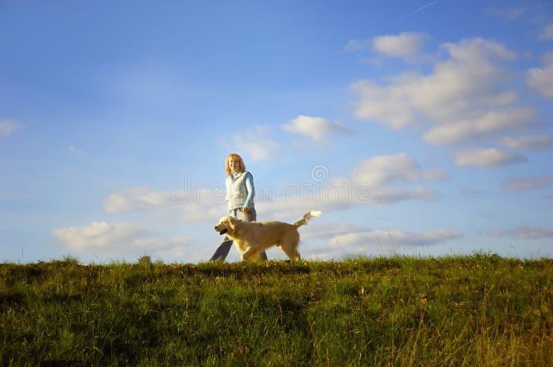 Caminhada com cão foto de stock royalty free