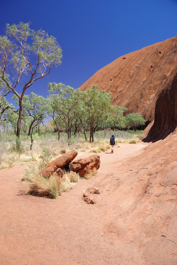 Caminhada da base de Uluru (rocha de Ayers) fotos de stock