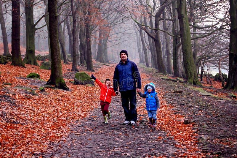 Caminhada da família! imagem de stock royalty free