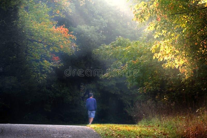 Caminhada da manhã foto de stock royalty free
