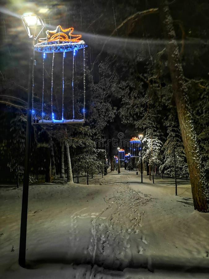 Caminhada da noite da neve imagem de stock royalty free