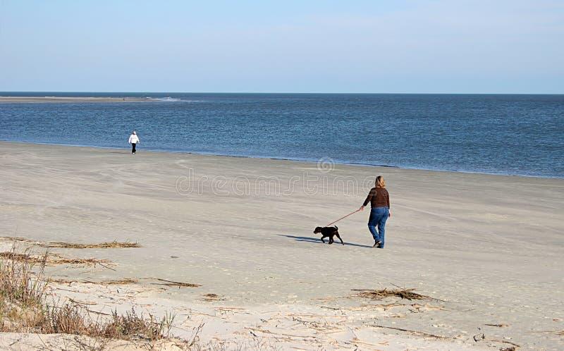 Caminhada da praia do inverno imagens de stock royalty free