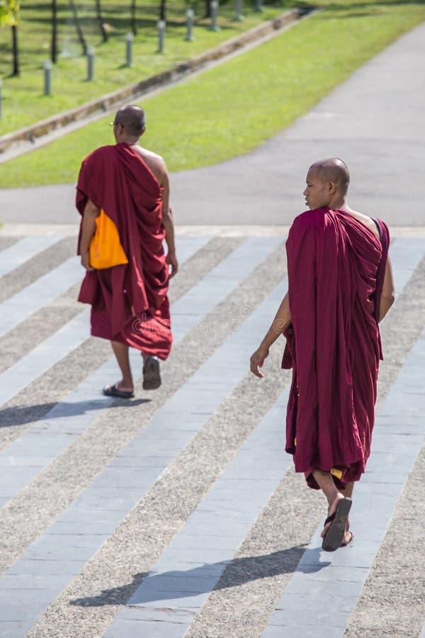 Caminhada das monges budistas em Yangon, Myanmar foto de stock