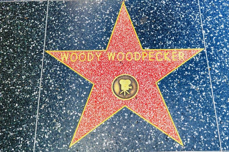 Caminhada de Hollywood da fama no bulevar de Hollywood fotos de stock
