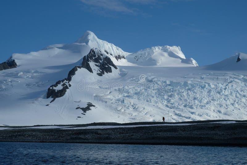 Caminhada de solo da Antártica abaixo das montanhas, da neve e das geleiras pristine foto de stock royalty free