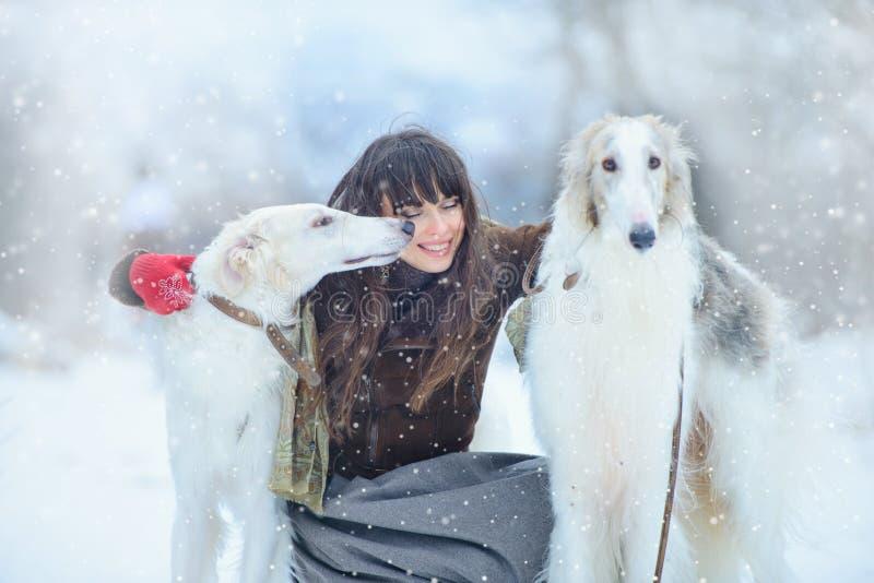 Caminhada do Natal A mulher surpreendida bonita no inverno veste-se com fundo gracioso com neve, emoções do inverno dos cães do g fotografia de stock