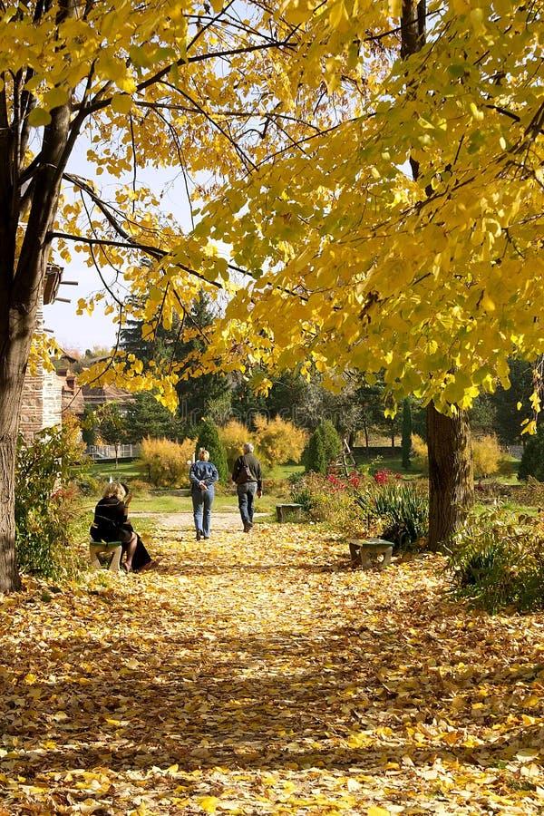 Caminhada do outono fotografia de stock