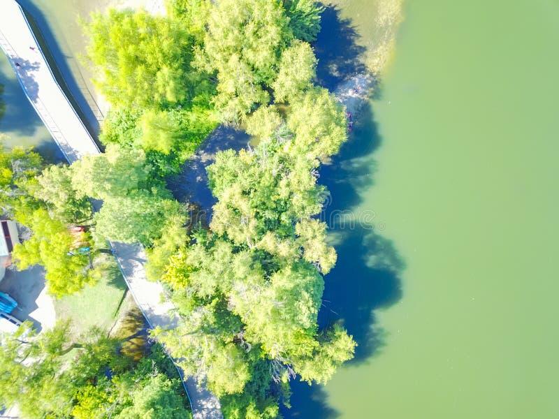 Caminhada do passeio à beira mar da vista aérea e fuga da bicicleta perto da senhora Bird Lake dentro fotos de stock
