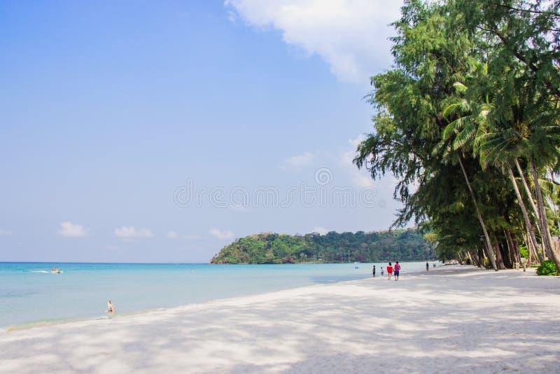 A caminhada do turista considera o panorama da praia branca da areia com as palmas de coco tomadas no haad Klong Chao na ilha tro fotografia de stock royalty free