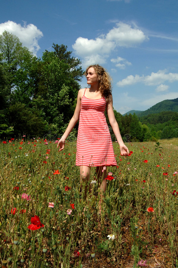 Caminhada do verão na natureza fotografia de stock royalty free