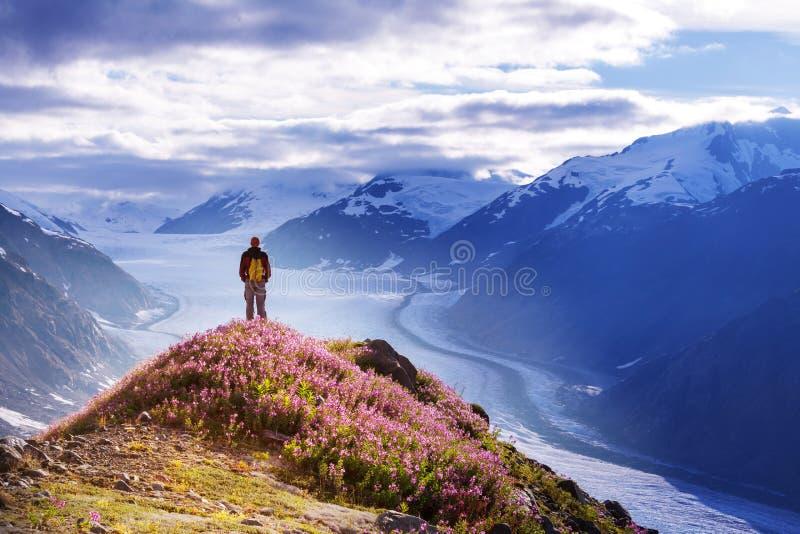 Caminhada em Alaska foto de stock
