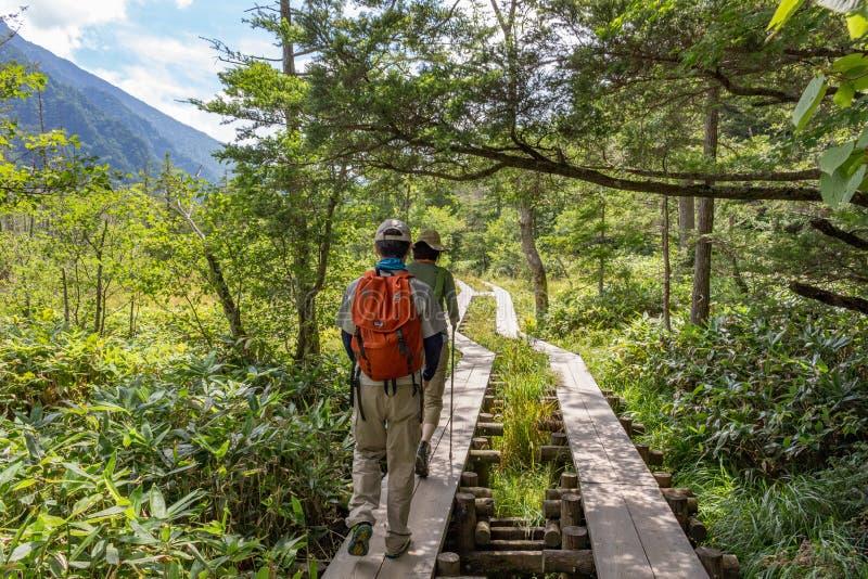 Caminhada em montanhas japonesas imagens de stock