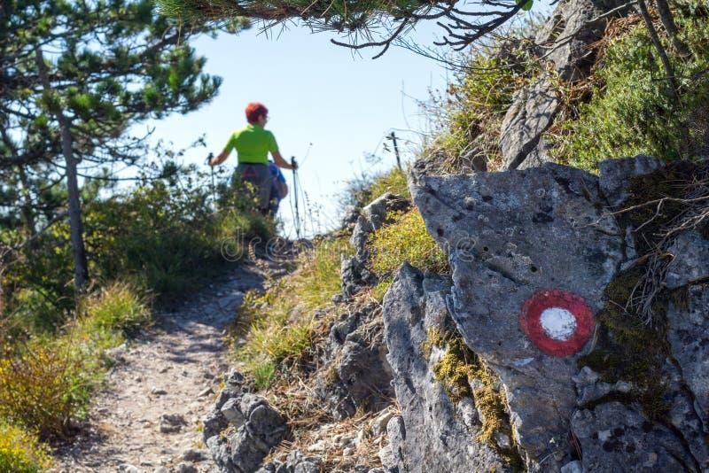 Caminhada fêmea em um dia ensolarado nas montanhas, imagem de atrás imagens de stock royalty free