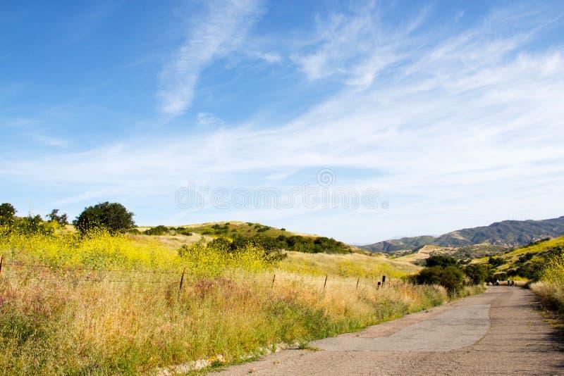 Caminhada fora para perder o peso e melhorar a saúde ao apreciar o cenário bonito fotos de stock