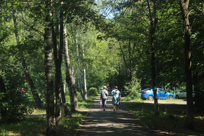 Caminhada a Korolev Aleia norte de Kooperativnaya fotografia de stock