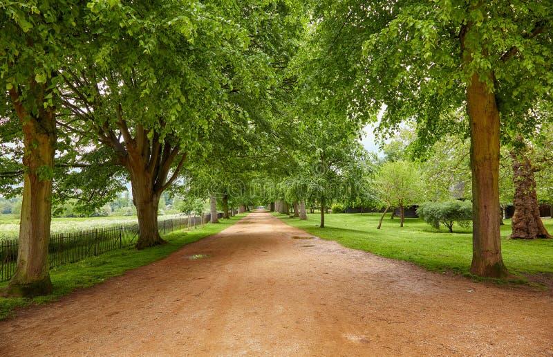 Caminhada larga Igreja de Christ Jardim do memorial da guerra Universidade de Oxford inglaterra fotografia de stock