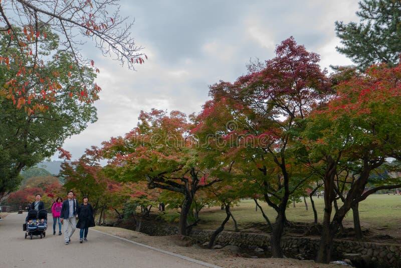 Caminhada não identificada do turista apreciando a cor do outono em Nara Deer Park em Nara, imagem de stock