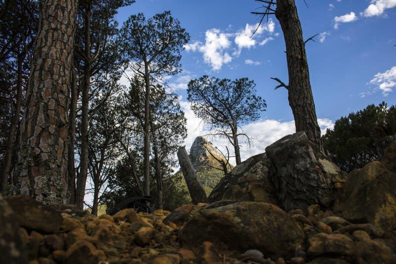 Caminhada na natureza com uma vista de uma montanha na distância com céus azuis imagem de stock royalty free