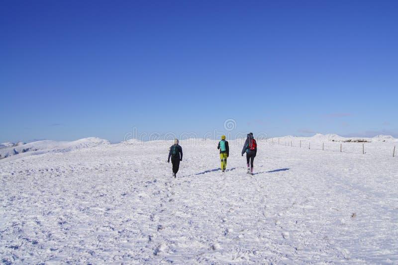 Caminhada na neve fotos de stock