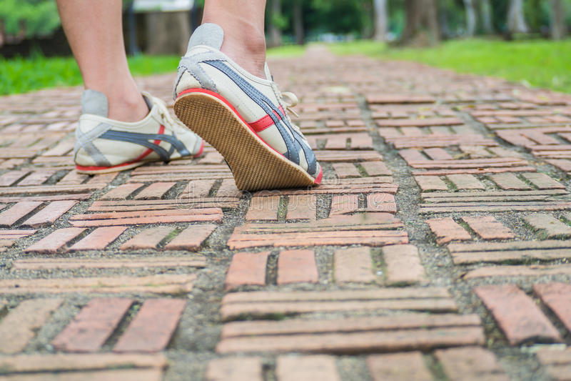 Caminhada na passagem do tijolo imagem de stock