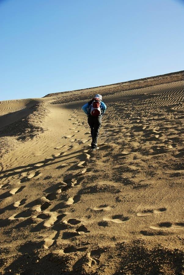 Caminhada no deserto fotos de stock