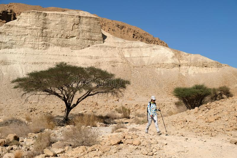 Caminhada no deserto de Judea foto de stock royalty free