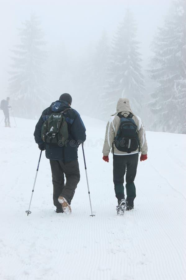 Caminhada no inverno foto de stock royalty free