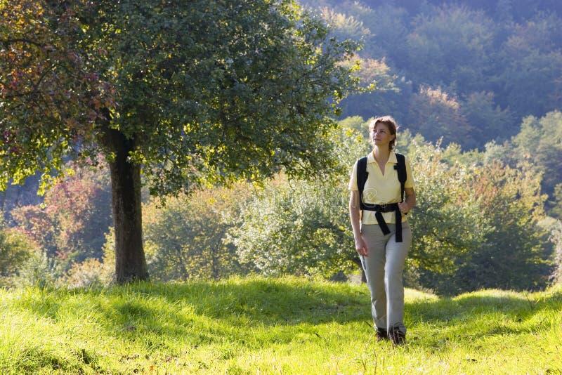 Caminhada no outono fotografia de stock