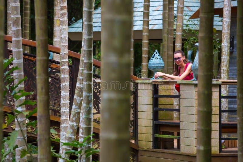 Caminhada no paraíso tropico Forest Park da baía de Yalong, Hainan, Chin imagem de stock royalty free