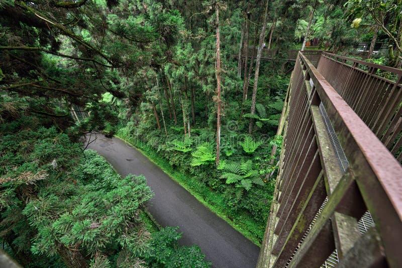 Caminhada no parque, Taiwan do céu imagens de stock
