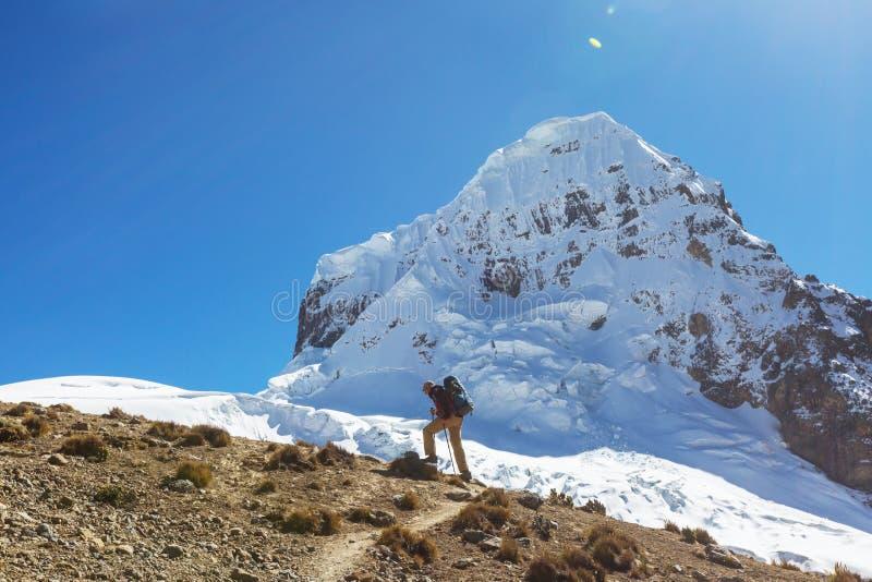 Caminhada no Peru fotos de stock royalty free