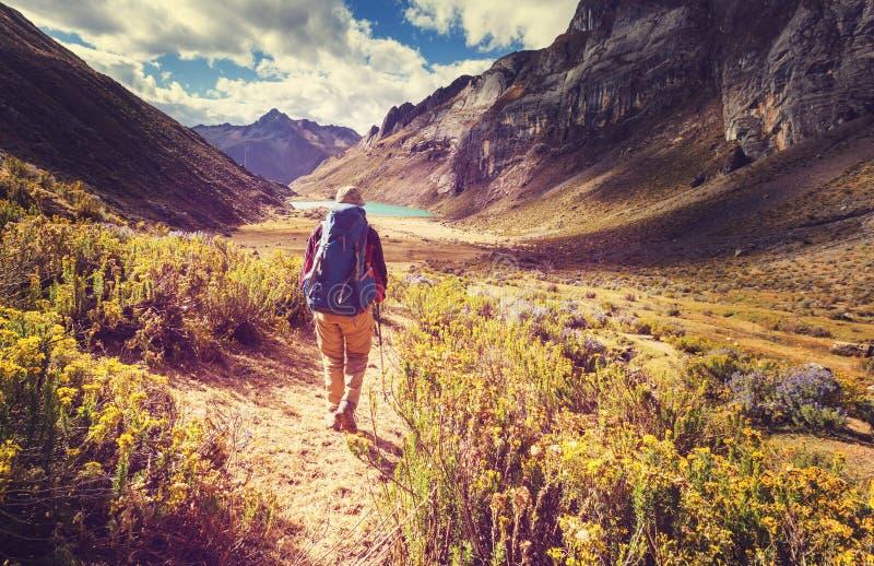 Caminhada no Peru foto de stock