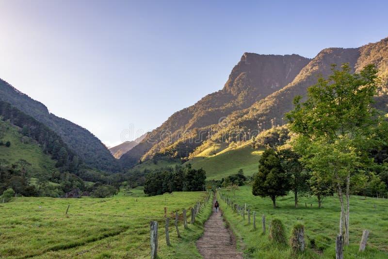 Caminhada no vale de Cocora fotos de stock royalty free
