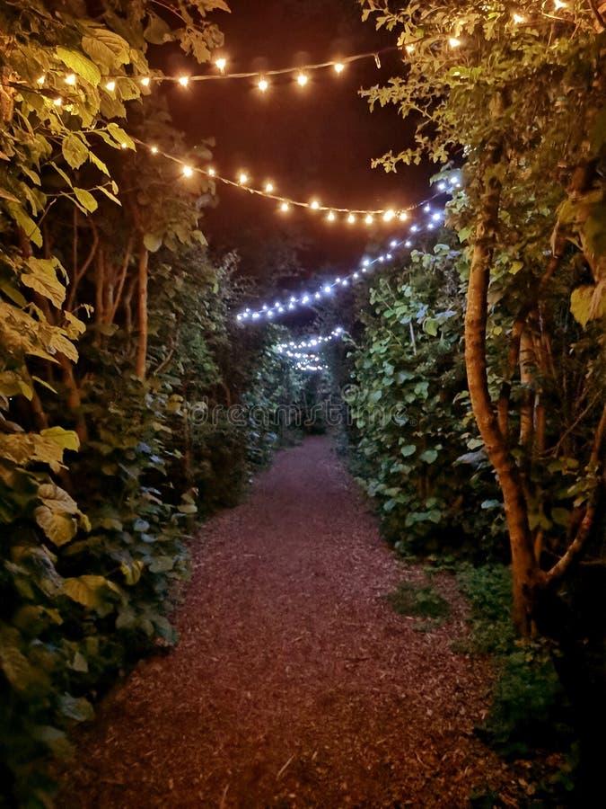 Caminhada romântica da noite fotografia de stock royalty free
