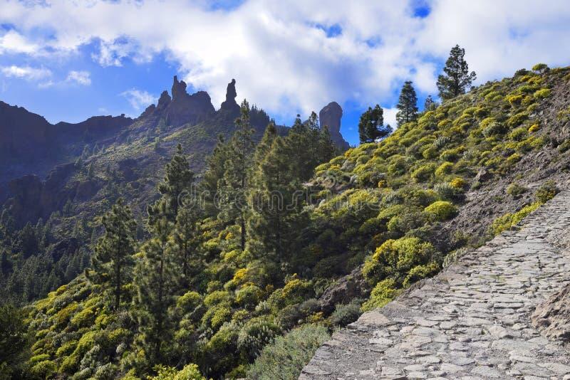 Caminhada a Roque Nublo em Gran Canaria imagem de stock